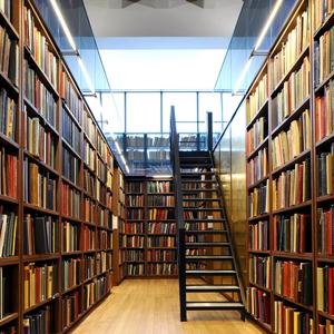 Библиотеки Славска