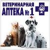 Ветеринарные аптеки в Славске