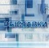 Выставки в Славске